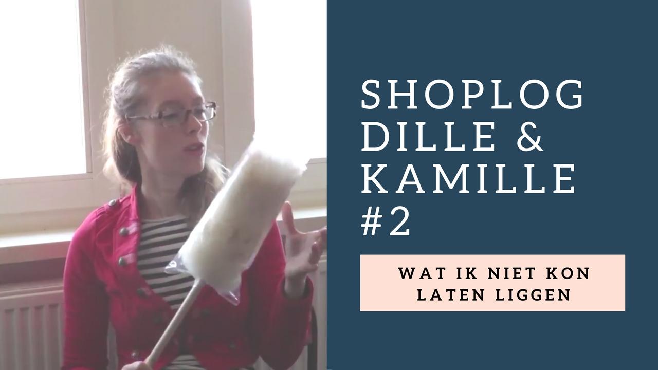 shoplog-dille-kamille-2-wat-ik-niet-kon-laten-liggen