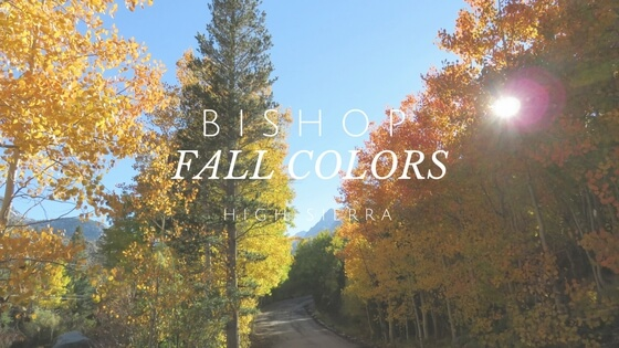 Bishop Fall colors High Sierra