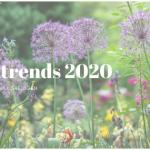 tuintrends 2020 planten kopen na ijsheiligen