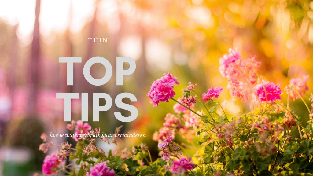 toptips voor je tuin en om je waterverbruik te verminderen waterverbruik verminderen